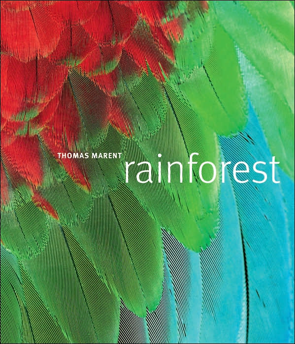 Picture of Gift Book: Rainforest